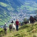 Projížďka na lamě - Gasteinertal Tourismus GBMH