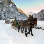 Zimní projížďka na koních
